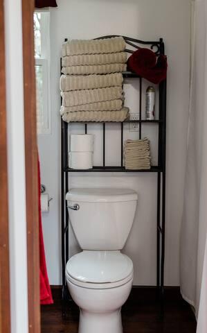 Full bathroom on the main floor, toilet