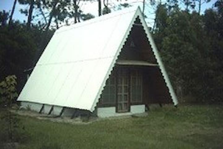 Coqueta cabaña de madera. 500mts terreno arbolado. - La Floresta - Nature lodge