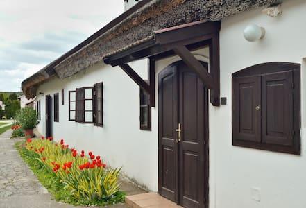 Pali bácsi vendégháza - Balatonakali - House