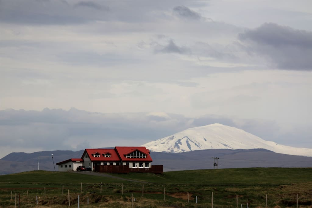 Volcano Hekla in the background