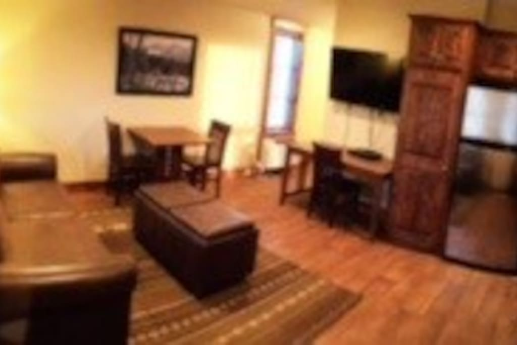 """Leather couch/sofa bed, 48"""" tv/Dish, Wi-Fi, Washer/Dryer"""