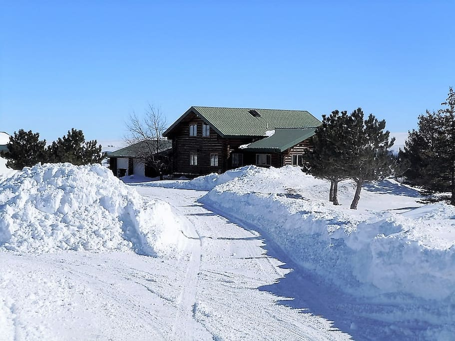 Winter at the Spruce Lodge