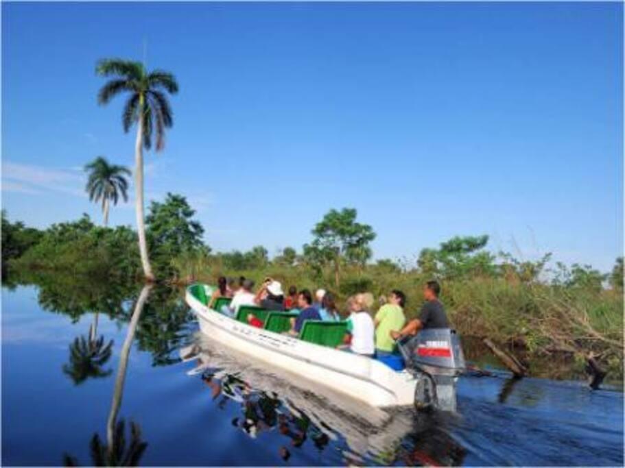 Paseo en Lancha Rápida en la Laguna del Tesoro