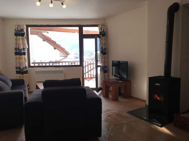 Sunny 2bed, 1.5bath, views of Mount Malyovitsa