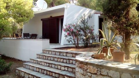 Guesthouse Sounion Attika Greece