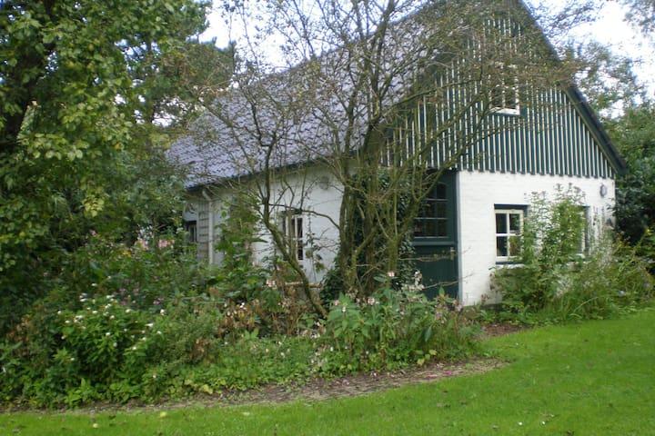Vacanze in Frisia Kollum