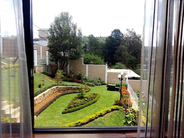 View of the garden from Jasmine