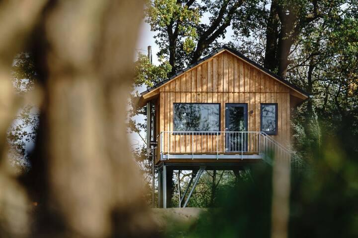 Glamping pur: Baumhaus an der Nordsee in der Natur