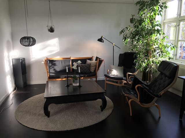 Young people and family house❤️ - København - Apartment