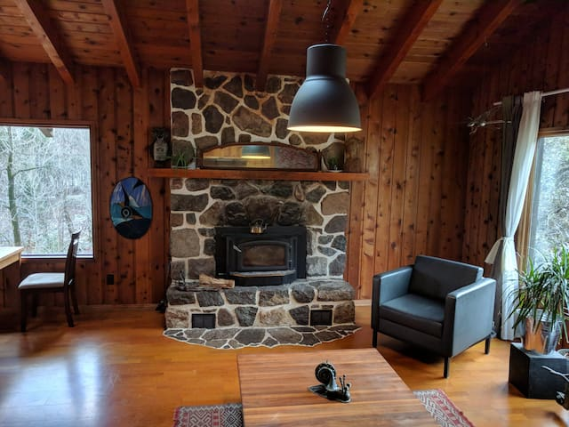 Centennial Log Home with lots of Charm