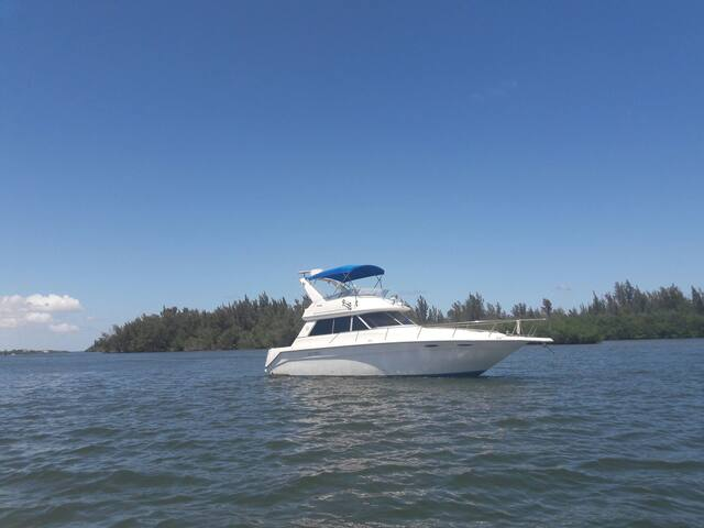 Relax on the River Aboard your own Yacht !! - Merritt Island - Barco