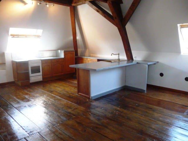 Bel appartement 100m² mansardé en pleine nature - Saint-Blaise-du-Buis - Pis