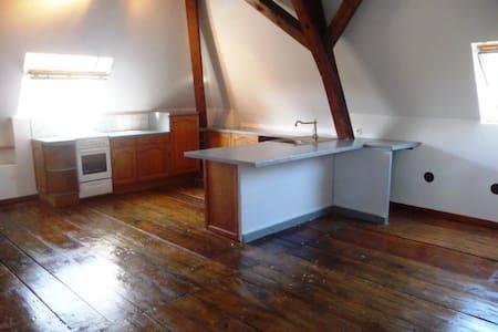 Bel appartement 100m² mansardé en pleine nature - Saint-Blaise-du-Buis - アパート
