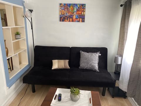 Simple City Living Burlington-1 block to Church St