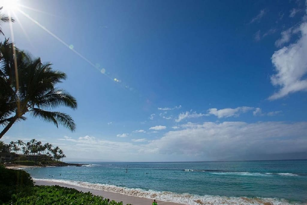 Napili Shores Resort - located on the end of the bay surround by Palm trees.