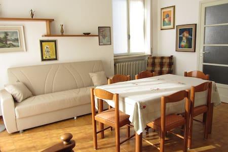 Appartamento luminoso e tranquillo - Canzo - Apartamento