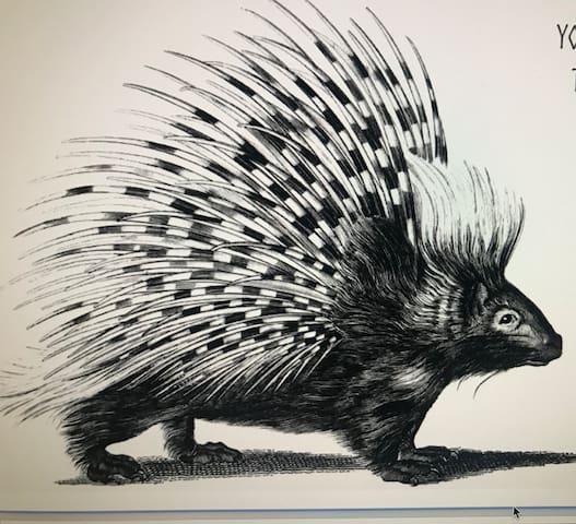 Guidebook for Porcupine Farm