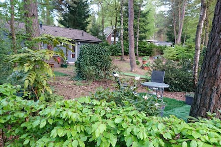 Huisje op de Veluwe op een park. 6 pers met Wifi