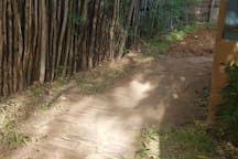 This is the path to the secret Glamping area on our property.