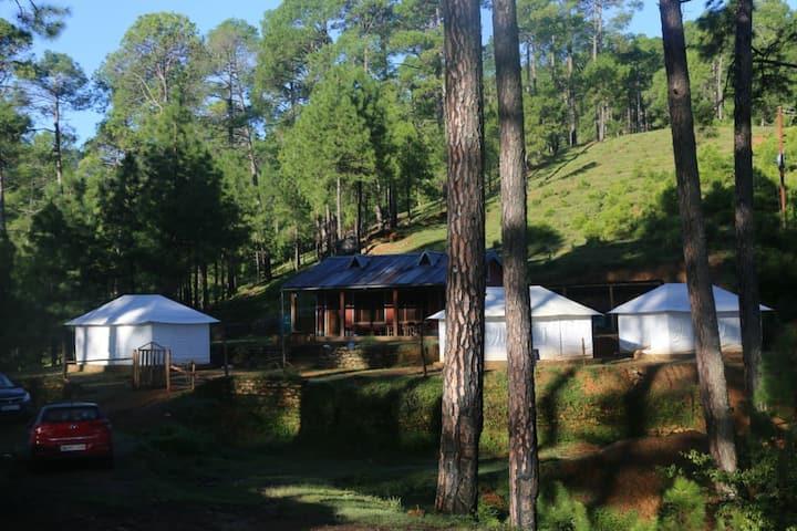 Kausani Eco Village