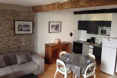 T2 centre historique Collioure 50 m plage WIFI - Collioure - Leilighet