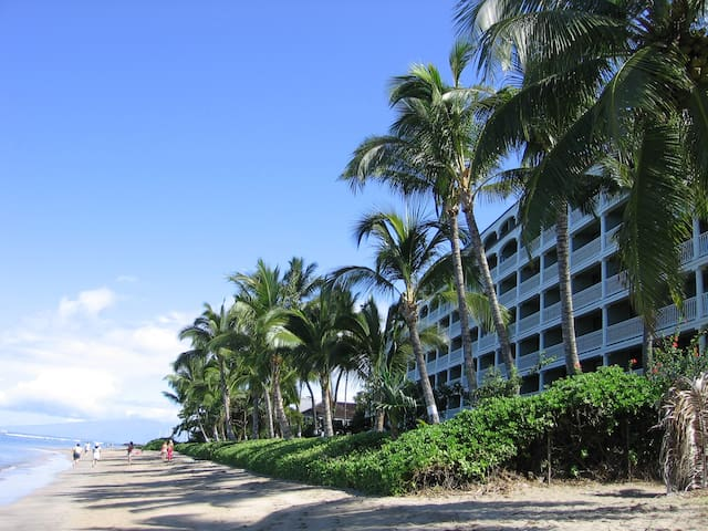 Sandy Beach! Lahaina Mountain View Condo