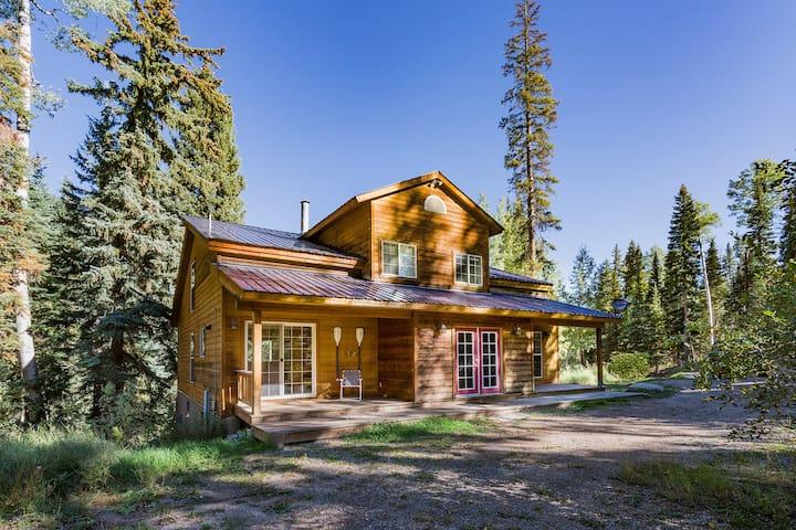 Pet Friendly 3500sq ft Cabin,over 1 acre,w/jacuzzi