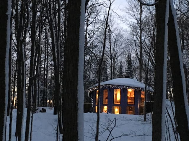 Birchwood Blue Cabin in the Forest