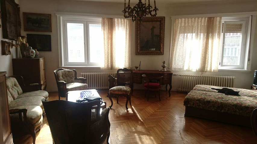 Charming apart facing the parlament - Boedapest - Appartement