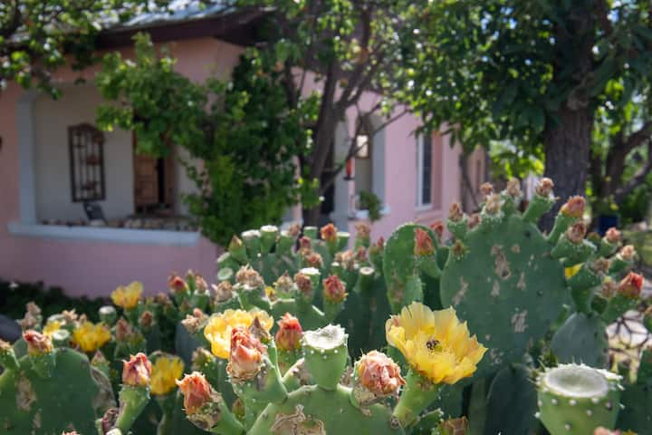 Sweet Adobe Home