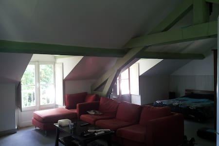 loft  trés proche du centre - Pau