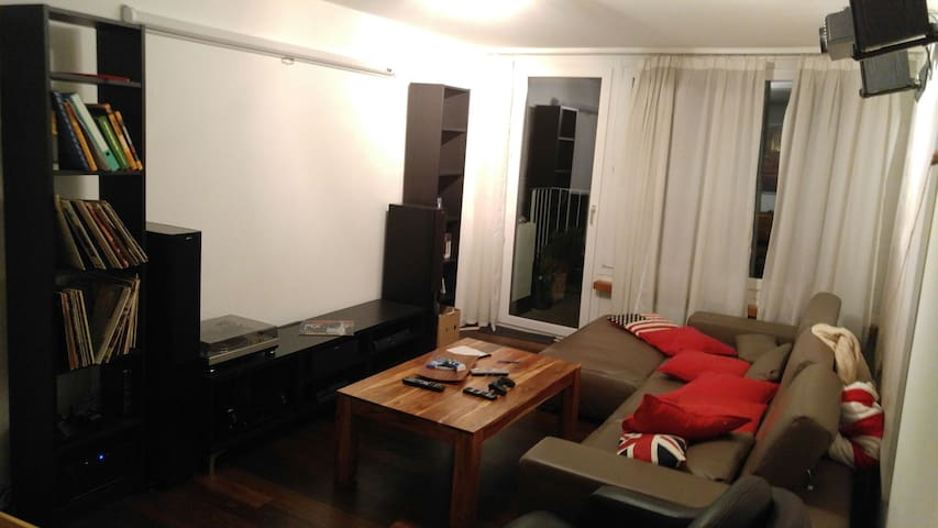 Quiet/cozy Zurich room available - Zürich - Huoneisto