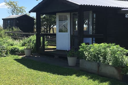 Summerhouse in organic veg garden