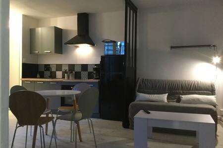 Agreable T2 centre historique - 坎佩爾(Quimper) - 公寓