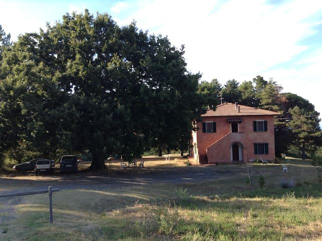 Chiricottero - Montaione