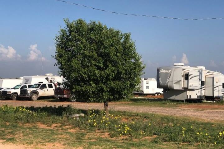 New RV's - Guest Services & Pre-Approved Dogs