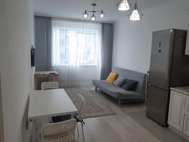 Comfortable Apartments in Millennium Park 45 m2