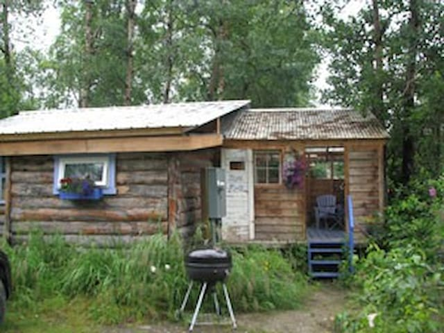 Fun and funky Blue Moon Cabin - Talkeetna