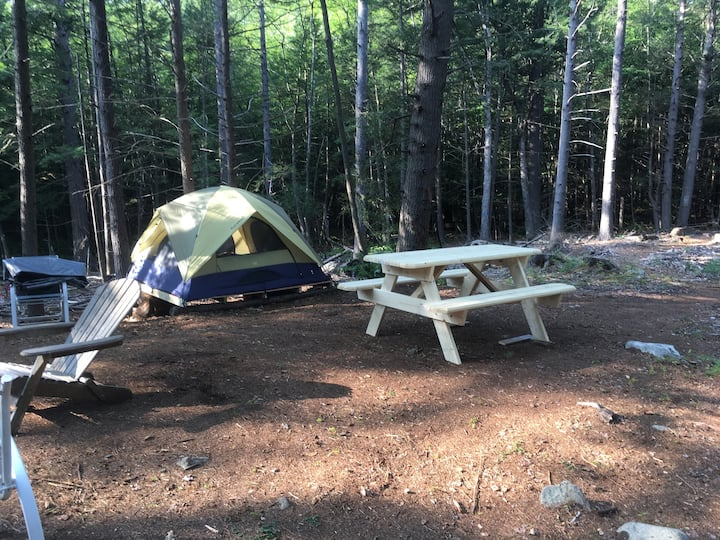 Peaceful private pet friendly campsite with a tent