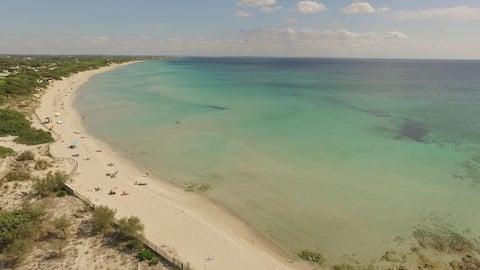 PEGASUS AND FALABEL,BREAKFAST INCLUDED,SEA 50 METERS