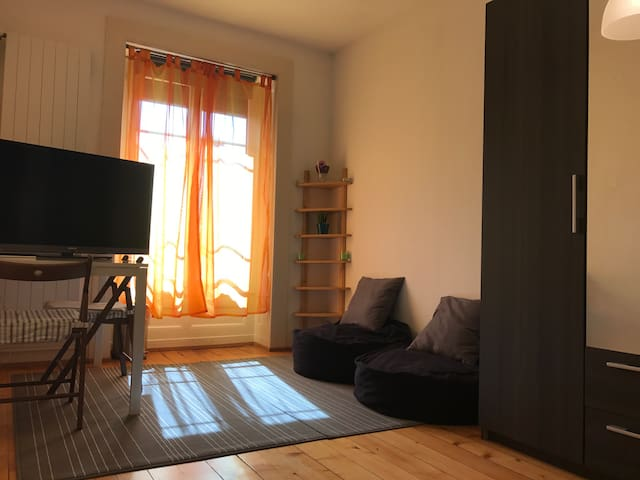 Big nice room in the center next to the river - Genève - Appartement