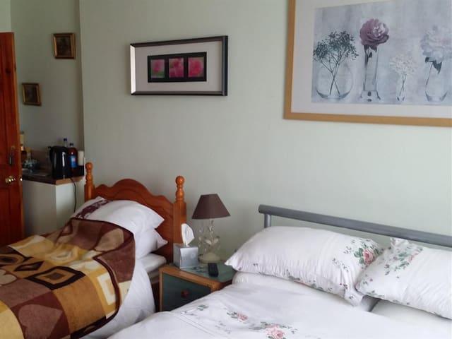 Carnegie - Green Room (ground floor)