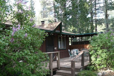 Markleeville Lilac Cottage, Cozy Creekside Cabin