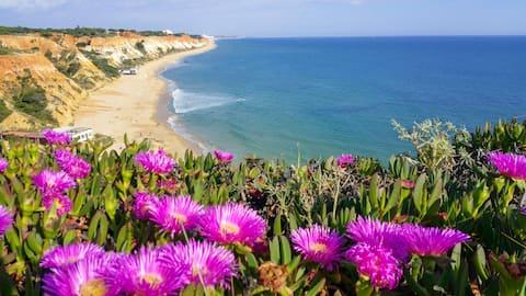 Falesia Beach Portugal - Apartment