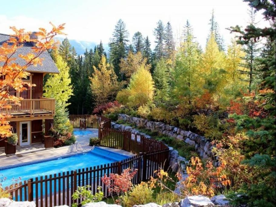 Timberline Lodges Swimming Pool 1