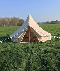 Luxury 5 Meter Bell Tent - Selham - 帳篷