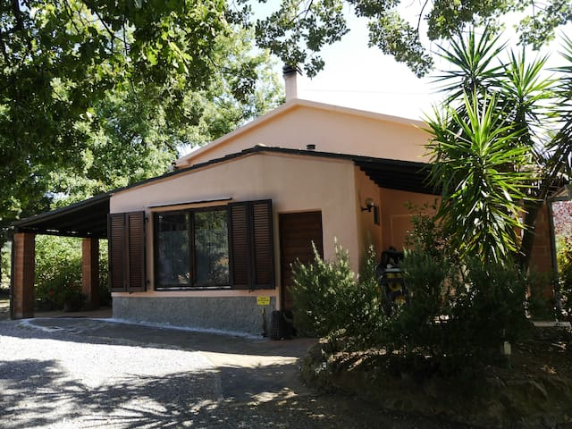 casa letizia -  tra gli ulivi a due passi dal mare