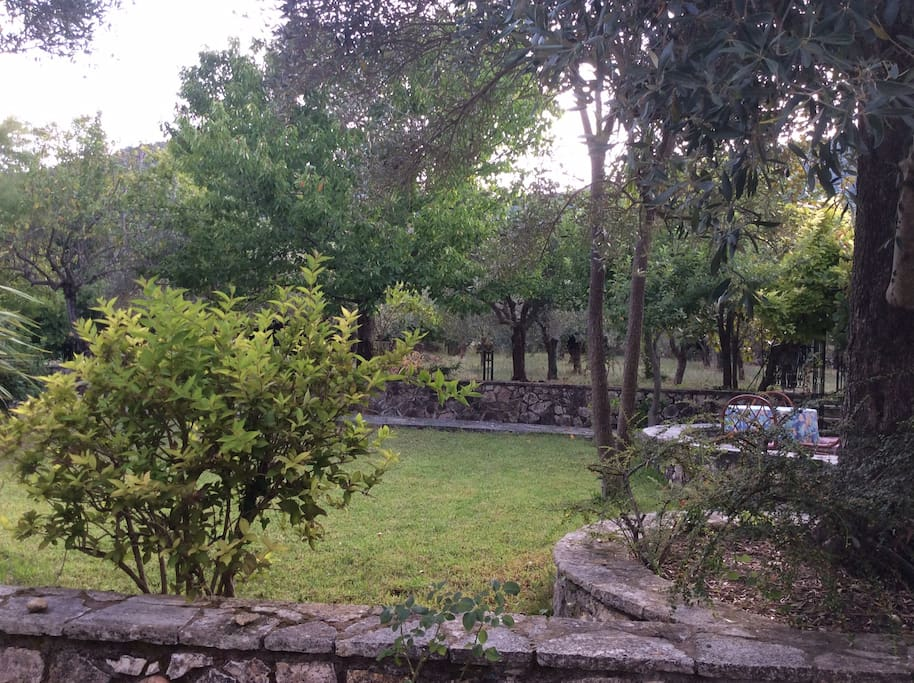 the gardens and the fruitful trees