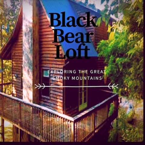 Black Bear Loft - Newport