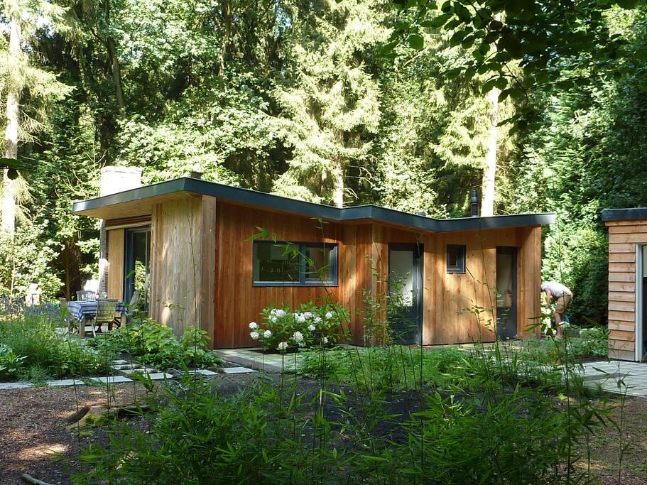sch ne bungalow mit 1800m2 privaten grund blockh tten. Black Bedroom Furniture Sets. Home Design Ideas